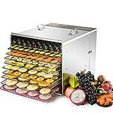 CO-Z Food & Jerky Dehydrator Machine with 10 Stainless Steel Trays, 1000 W