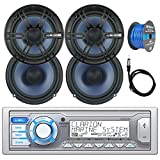 Best Clarion Car Stereo Systems - Clarion Single DIN Marine Digital Media USB/MP3/WMA AM/FM Review