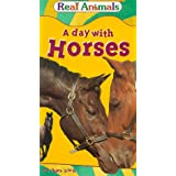 Day With Horses, a