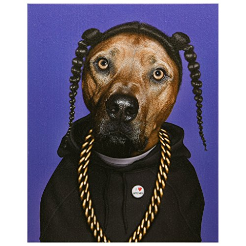 Empire Art Direct Pets Rock Rap Graphic Wrapped Canvas Dog Wall Art, 20″ x 16″ x 2″, Ready to Hang