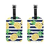 ALAZA Summer Fruit Pineapple Luggage Tags Travel Bag Tag Suitcase Labels 2pcs