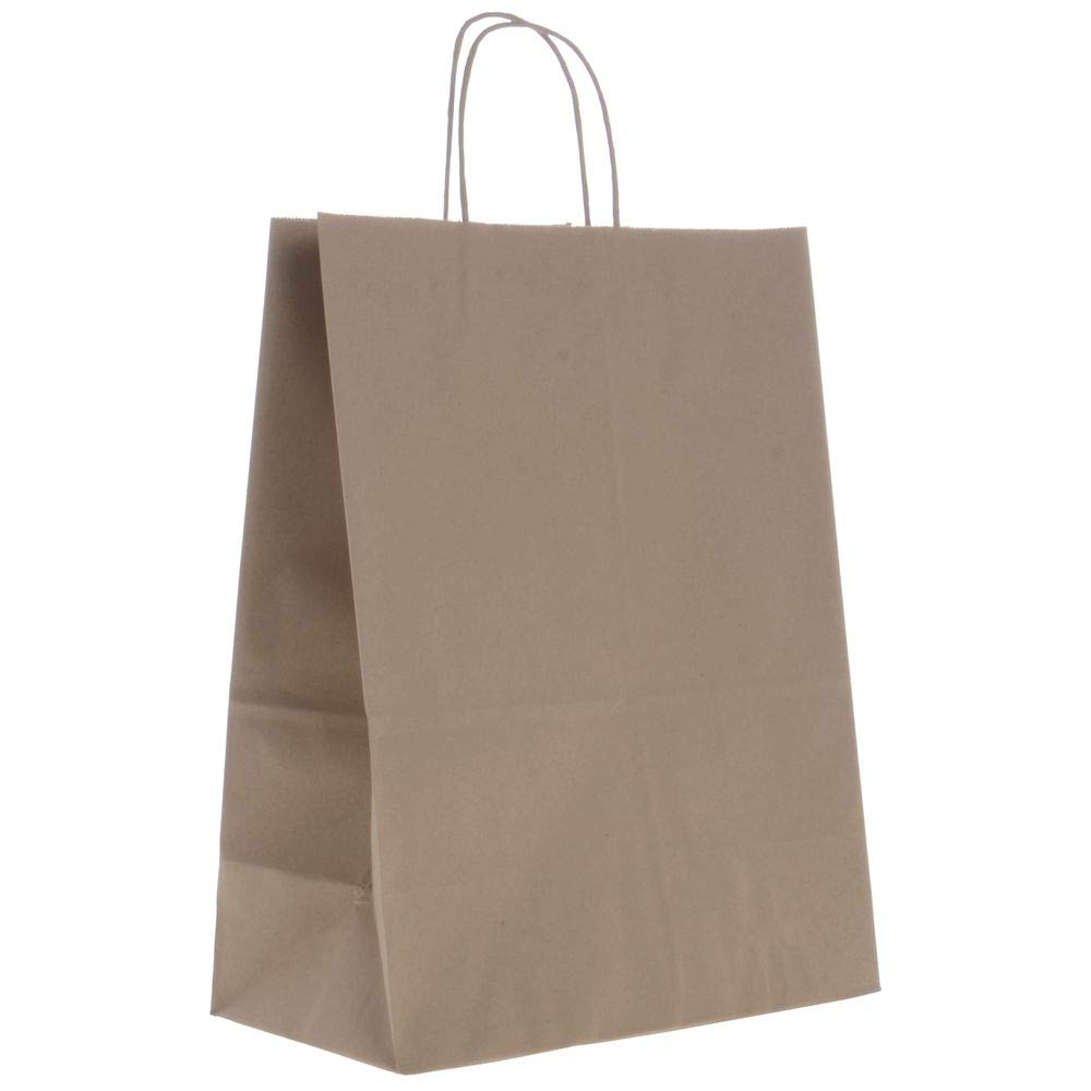 Gift Bags Kraft Brown Paper 10 x 5 x 13 1//2 250 per Case