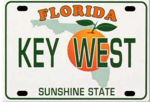 Key West Florida License Plate Fridge Collector's Souvenir Magnet 2.5