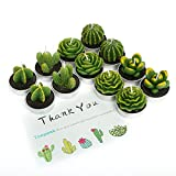 Toopeek 12 Pieces Quality Cactus Tealight Candles Handmade Delicate Succulent Cactus Candles Holder for Home Decor and Gifts