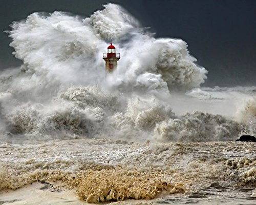 - Lighthouse 8 x 10/8x10 GLOSSY Photo Picture IMAGE #18