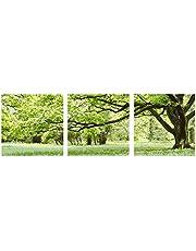 DIY ölgemälde Staffelei 3 Bilder[mit Holzrahmen] Malen nach Zahlen Neuerscheinungen Neuheiten, Malen nach Zahlen Kits-Der Schmetterlings