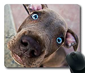 Chesapeake Bay Retriever Rectangle Mouse Pad by icasepersonalized by runtopwell