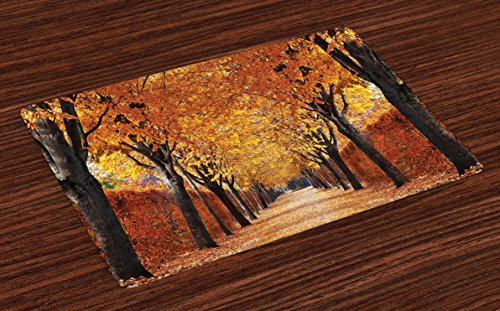 Ambesonne Autumn Place Mats Set of 4, Pathway in The Woods Covered with Dried Deciduous Tree Leaves Romantic Fall Season, Washable Fabric Placemats for Dining Table, Standard Size, Orange Brown