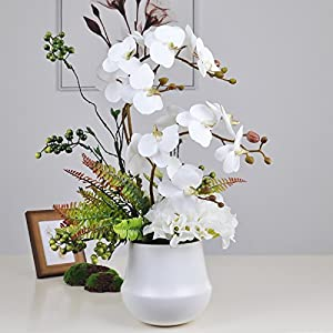 The moth orchid emulation flower living room coffee table home ornaments Chinese Orchid Pot plants Uniteds Kit emulation flower art high bandwidth -35cm -55cm 82