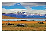 Lunarable Horse Pet Mat for Food and Water, Farmland Animals Grazing in a Meadow Near the Lake with Mountains of Torres del Paine, Rectangle Non-Slip Rubber Mat for Dogs and Cats, Multicolor
