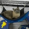 Metacrafter Cat Hammock Hamster Hanging Toy Small Pet Pad Bed For Guinea Pig Chinchilla Kitten Ferret Mice Rabbit Squirrel Playing Cozy Spot Waterproof Reversible 2 Sides Blue L Size