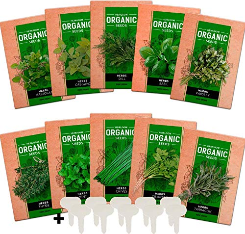 - 10 Culinary Herb Seed Vault - Heirloom and Non GMO - 3000 Plus Seeds for Planting for Indoor or Outdoor Herbs Garden, Basil, Cilantro, Parsley, Chives, Thyme, Oregano, Dill, Marjoram, Mint, Tarragon