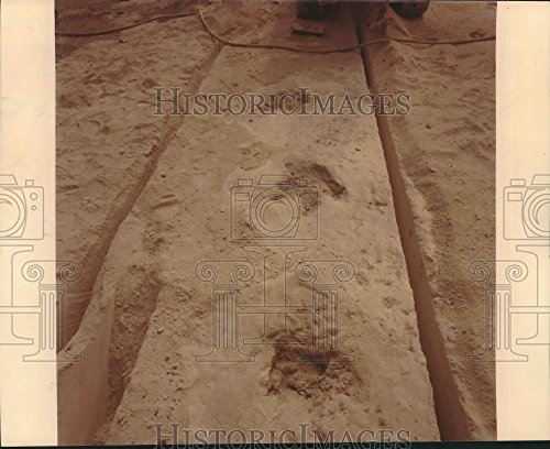 (Vintage Photos Historic Images 1976 Press Photo Dinosaur Tracks - hca21237-8.25 x 10 in)