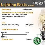7 Watt Night Light Replacement Bulbs - 10 Pack + 2