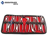 OdontoMed2011 10 Pieces of EXTRACTING Forceps Extraction Dental Instruments Dental Tools Set KIT ODM