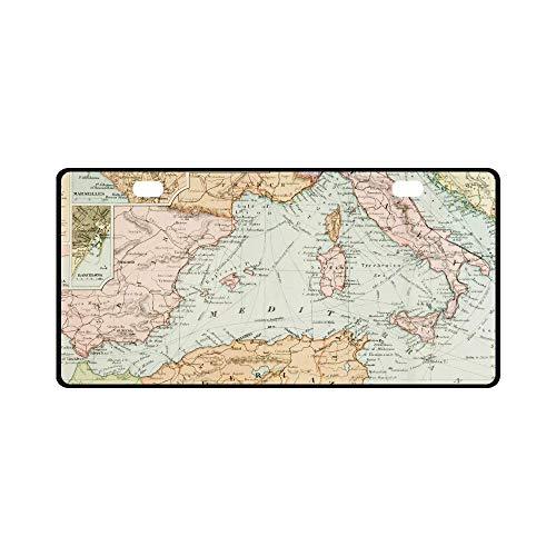 Ca Panoramic Map - Teisyouhu Panoramic View of an Antique Map Historical Art Decor Automotive License Plate Cover US CA Standard Metal Chrome Tag Holder