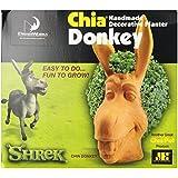 Chia Donkey Handmade Decorative Planter, 1 Kit