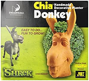 Chia Donkey Handmade Decorative Planter, 1 Kit