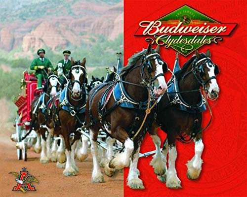"Budweiser Clydesdales-Vintage Sign Poster Print-10 x 8""-Wall Decor Print-Ready To Frame-Famous Stagecoach Replica Print. Retro Decor for Man Cave-Bar-Game Room-Garage-Dorm. Perfect Memorabilia Gift!"