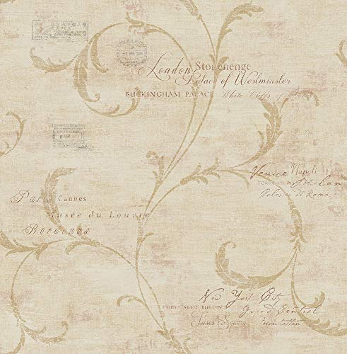 Vintage Scroll Wallpaper in Sienna MV82101 from Wallquest