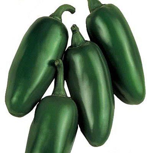 Hot Pepper Hybrid (Senorita F1 Hybrid Hot Pepper Seeds - Excellent for making mild salsa!!!!!(50 - Seeds))