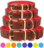 Leather Dog Collar - CollarDirect Leather Dog Collar Brass Buckle Soft Padded Puppy Small Medium Large Red Pink Blue Green Purple Yellow (Neck Fit 11