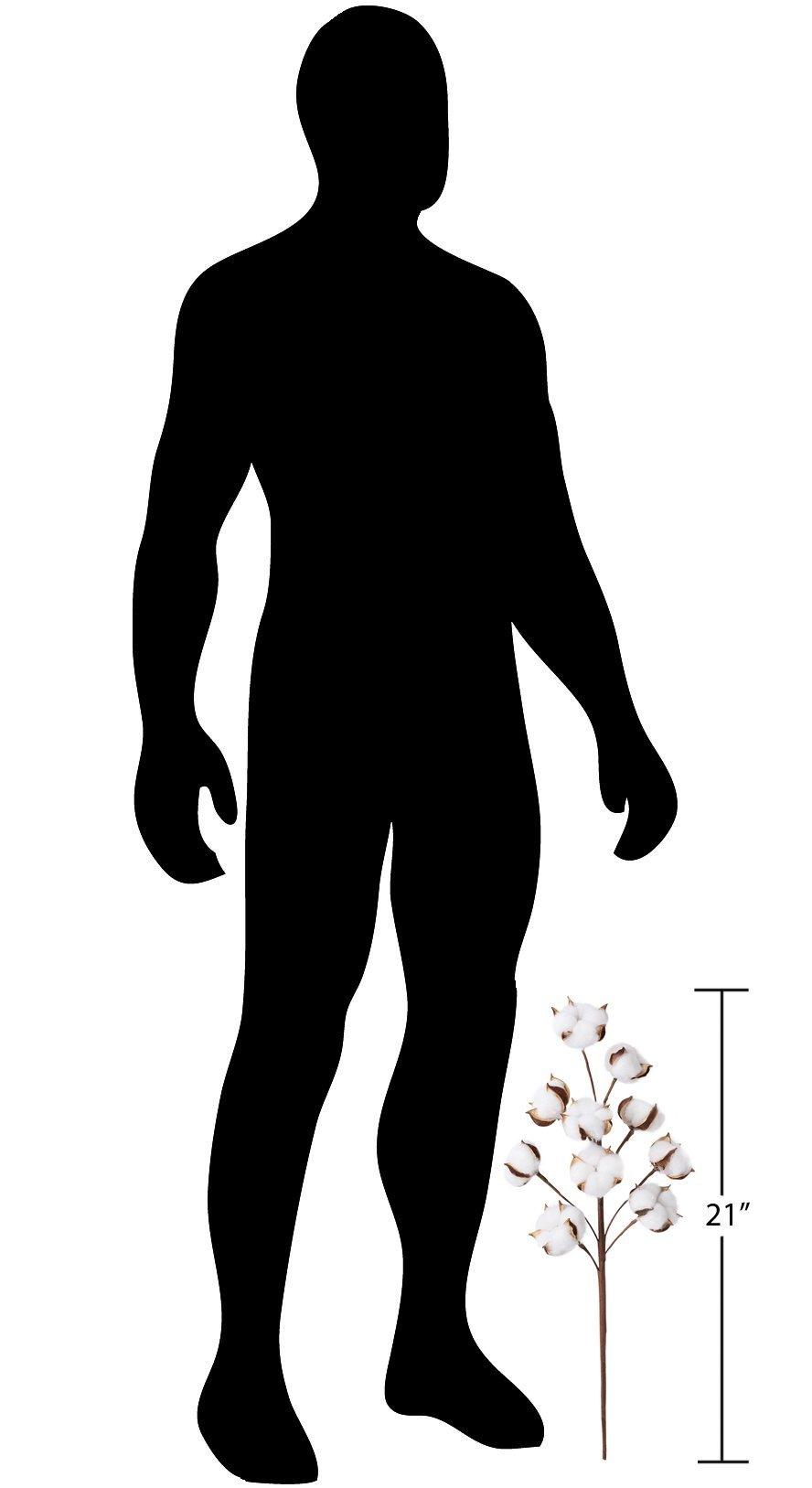 Allora Decor stems1 3 Pack Stems, 21'', Brown by Allora Decor (Image #6)