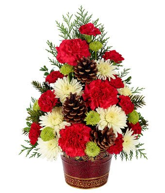 Winter Fun - eshopclub Same Day Christmas Flower Delivery - Online Christmas Flowers - Christmas Flowers Bouquets & Plants - Send Christmas Centerpiece by eshopclub