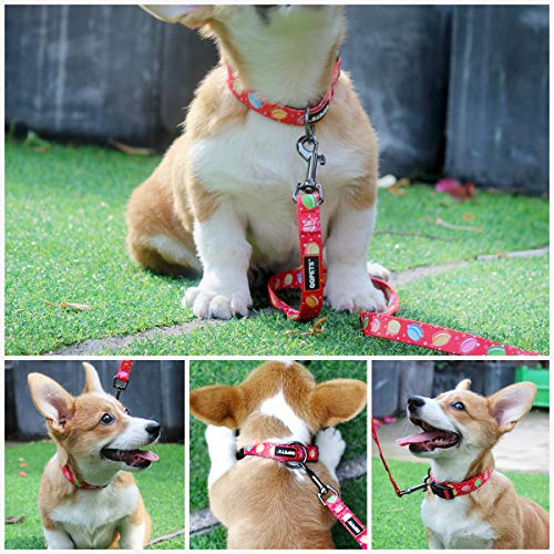 QQPETS Collar Leash Set Collars with Handle Large