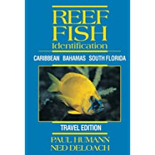 Reef Fish Identification Travel Edition