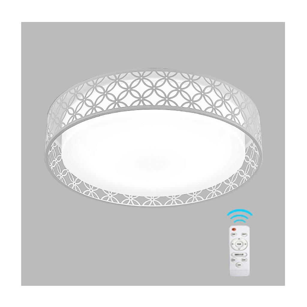天井照明 シーリングライトモダンクリエイティブ、LED調光対応アクリル錬鉄、リビングルームのインテリア寝室研究キッチンダイニングテーブル廊下天井ランプ シーリングライト (色 : B, サイズ さいず : 48cm/24w/Stepless dimming)   B07S674DG8