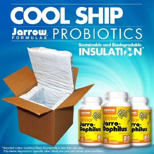Cheap Senior Jarro-Dophilus, 20 Billion Viable Cells Per Capsule, 60 Count (Cool Ship, Pack of 3)