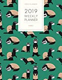 2019 Weekly Planner Ferret: Dated With To Do Notes And Inspirational Quotes - Ferrets In Green (Cute & Adorable Calendar Diary Book)