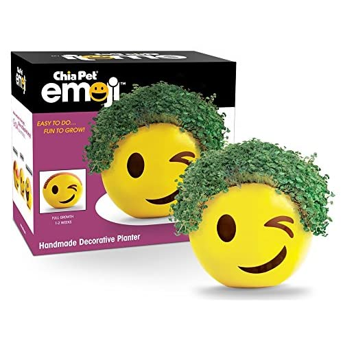 Chia Emoji Winky Handmade Decorative Planter, Yellow