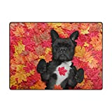 Vantaso Soft Foam Area Rugs French Bulldog On Red Yellow Maple Leaves Non Slip Play Mats 63x48 inch for Kids Playing Living Room