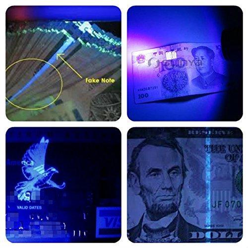 Pet Urine Detector Ultraviolet Blacklight Flashlight By