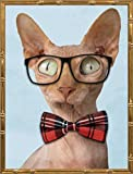 18x24 Sophisticated Sphynx by Prime, Marcus: Gold Bamboo MP-RC-068A