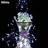 Sinwo 2M 20LED Solar String Lights Cork Wine Bottle Stopper Copper Wire String Lights Fairy Lamps Home Deocr (White)