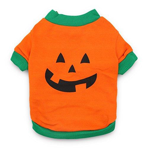 DroolingDog Pet Clothes Dog Halloween T-shirt Pumpkin Head Costume for Small Dogs, Medium, Deep Green -