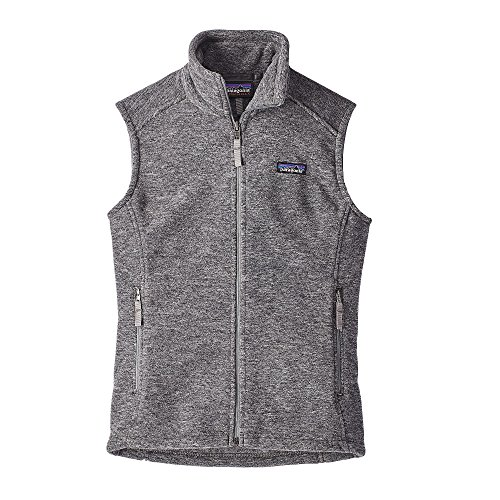 Patagonia Women's Classic Synchilla Vest (X-Large, Nickel)
