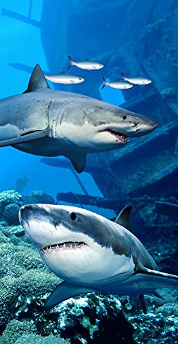 Two Sharks Terry Velour Beach/Bath Towel