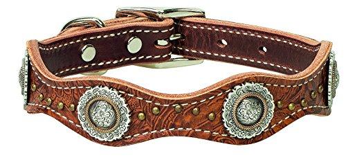 Weaver Leather Pet Western Edge Dog Collar