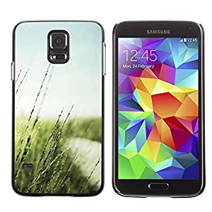 LECELL -- Funda protectora / Cubierta / Piel For Samsung Galaxy S5 SM-G900 -- Nature Beautiful Forrest Green 20 --