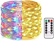Cocoselected Fairy Lights for Bedroom,33ft 100LEDs Warm White Indoor String Lights USB Powered,Twinkle Lights