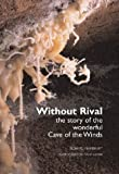 img - for Without rival: The story of the wonderful Cave of the Winds by Richard J Rhinehart (2000-06-26) book / textbook / text book