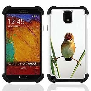"""SAMSUNG Galaxy Note 3 III / N9000 / N9005 - 3 en 1 impreso colorido de Altas Prestaciones PC Funda chaqueta Negro cubierta gel silicona suave (Angry Bird Naturaleza Permanente de paja"""")"""