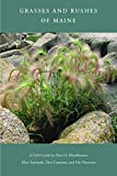 : Grasses and Rushes of Maine