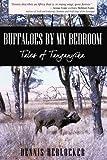 Buffaloes by My Bedroom, Dennis Herlocker, 1440147248