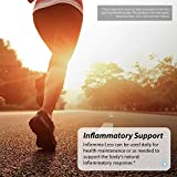 Irwin Naturals Inflamma-Less, Promotes