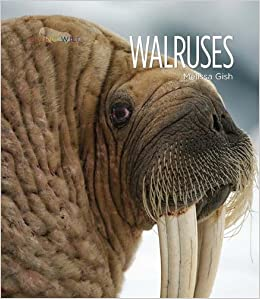 Walruses (Living Wild (Pdf))
